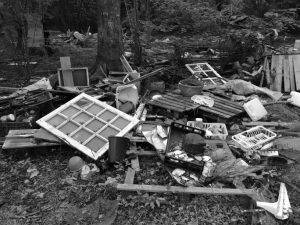 Ruins at la ZAD. Image credit: zadforever.blog